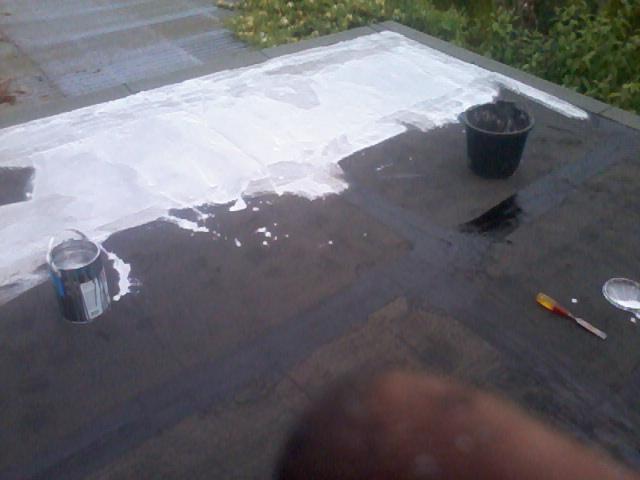 Solar Paint Finish Flat Roof 07